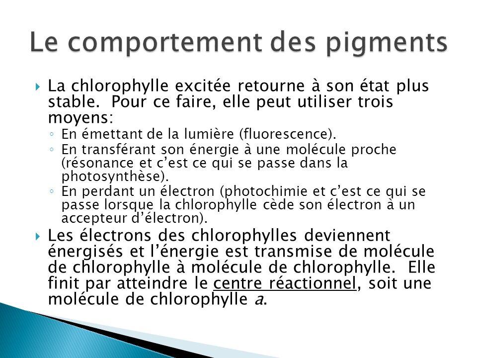 La chlorophylle excitée retourne à son état plus stable. Pour ce faire, elle peut utiliser trois moyens: En émettant de la lumière (fluorescence). En