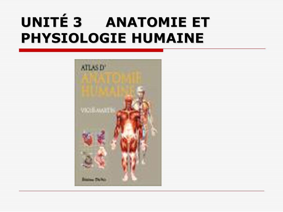 UNITÉ 3ANATOMIE ET PHYSIOLOGIE HUMAINE