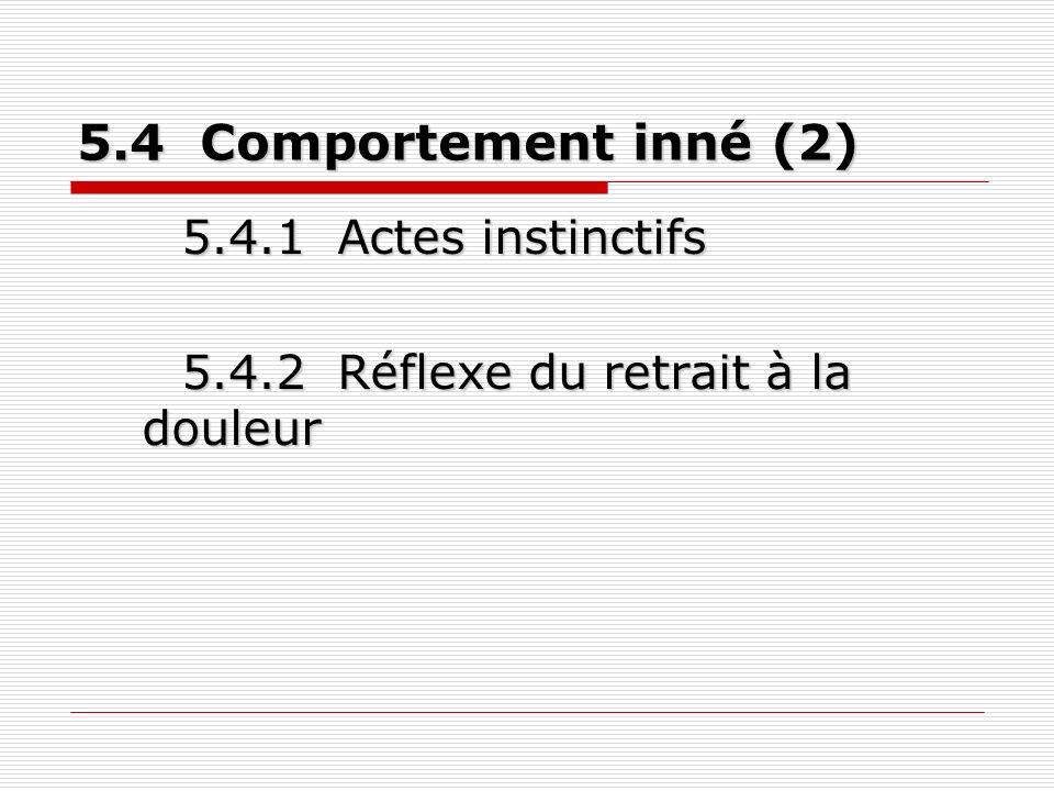 5.4 Comportement inné (2) 5.4.1 Actes instinctifs 5.4.2 Réflexe du retrait à la douleur