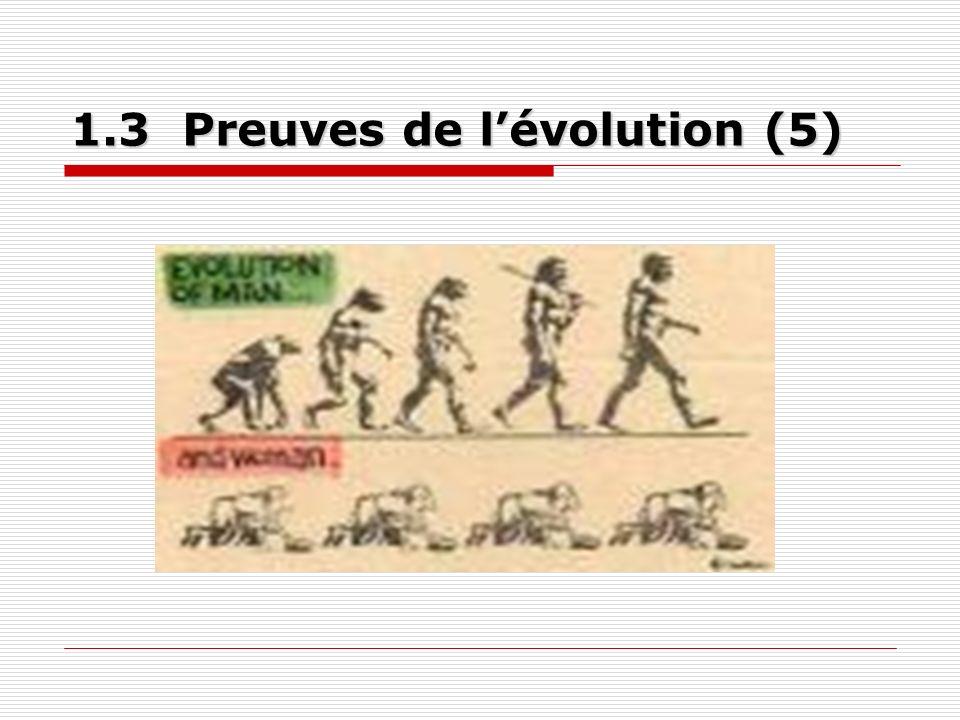 1.3 Preuves de lévolution (5)