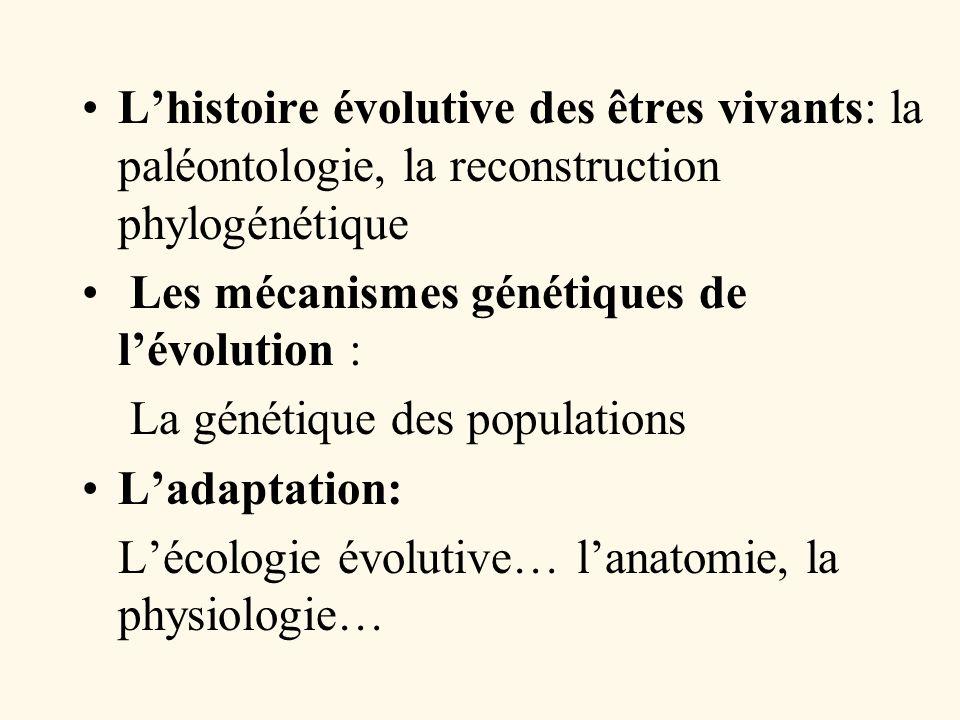 Lhistoire évolutive des êtres vivants: la paléontologie, la reconstruction phylogénétique Les mécanismes génétiques de lévolution : La génétique des p