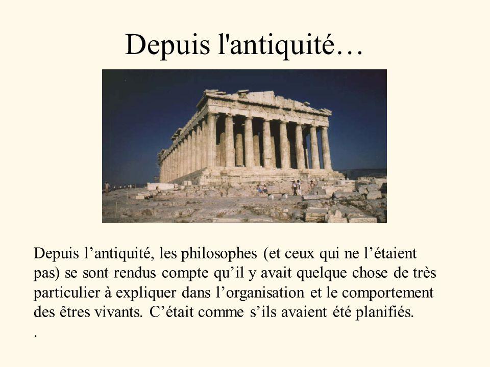 Depuis l'antiquité… Depuis lantiquité, les philosophes (et ceux qui ne létaient pas) se sont rendus compte quil y avait quelque chose de très particul