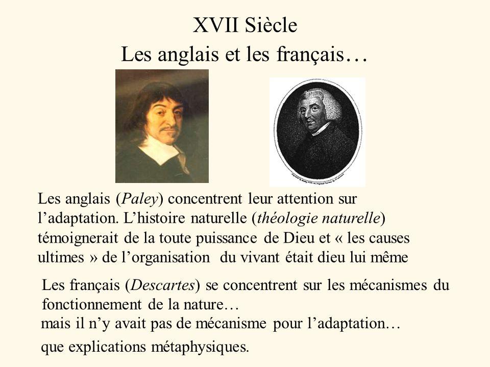 XVII Siècle Les anglais et les français … Les anglais (Paley) concentrent leur attention sur ladaptation. Lhistoire naturelle (théologie naturelle) té