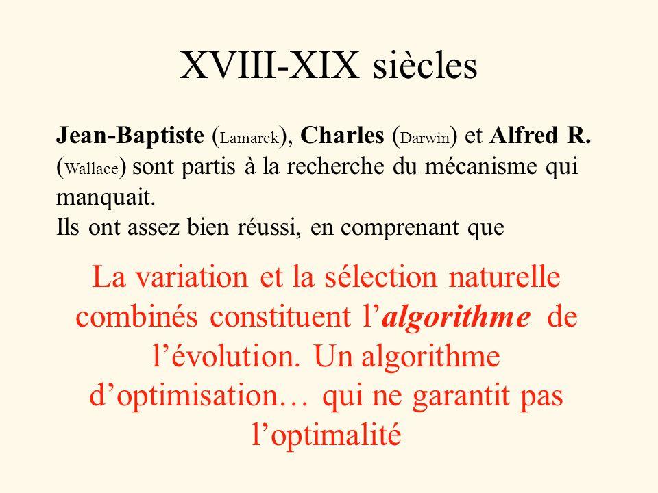 XVIII-XIX siècles Jean-Baptiste ( Lamarck ), Charles ( Darwin ) et Alfred R. ( Wallace ) sont partis à la recherche du mécanisme qui manquait. Ils ont
