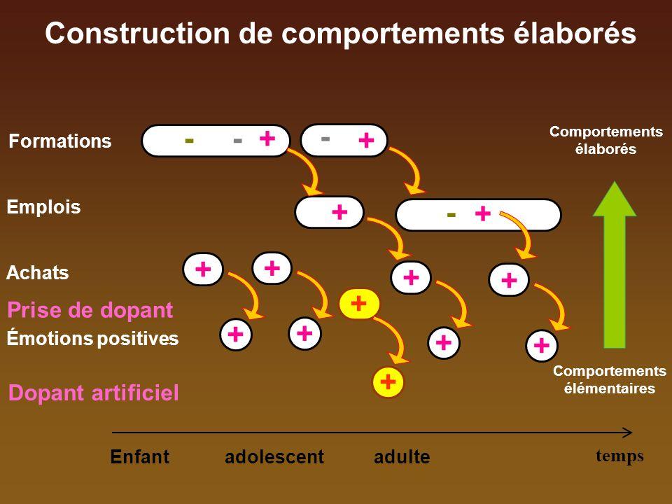 Probénécide Barichnikov - GH - Corticoïdes Législation Stéroïdes : -Dianabol (1958) -Nandrolone (1960) -GH et analogues, -masquants, - EPO … Ephédrine