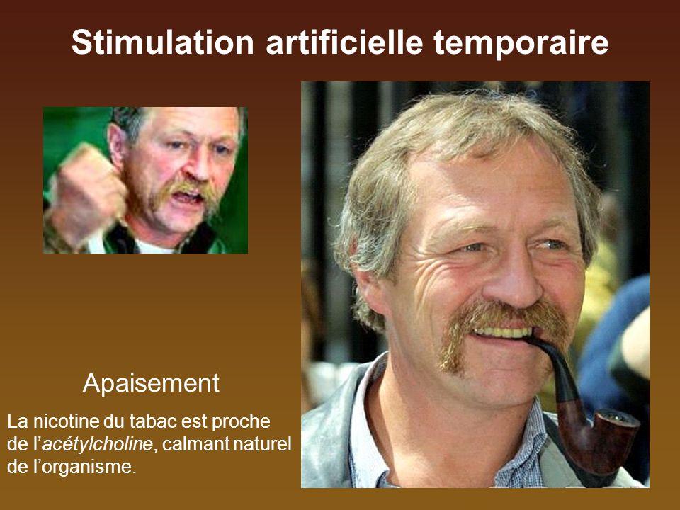Stimulation artificielle temporaire Moulin de Lagnet - AlterTour 2008 Saint-émilion, le 20 juillet Stress de la scène