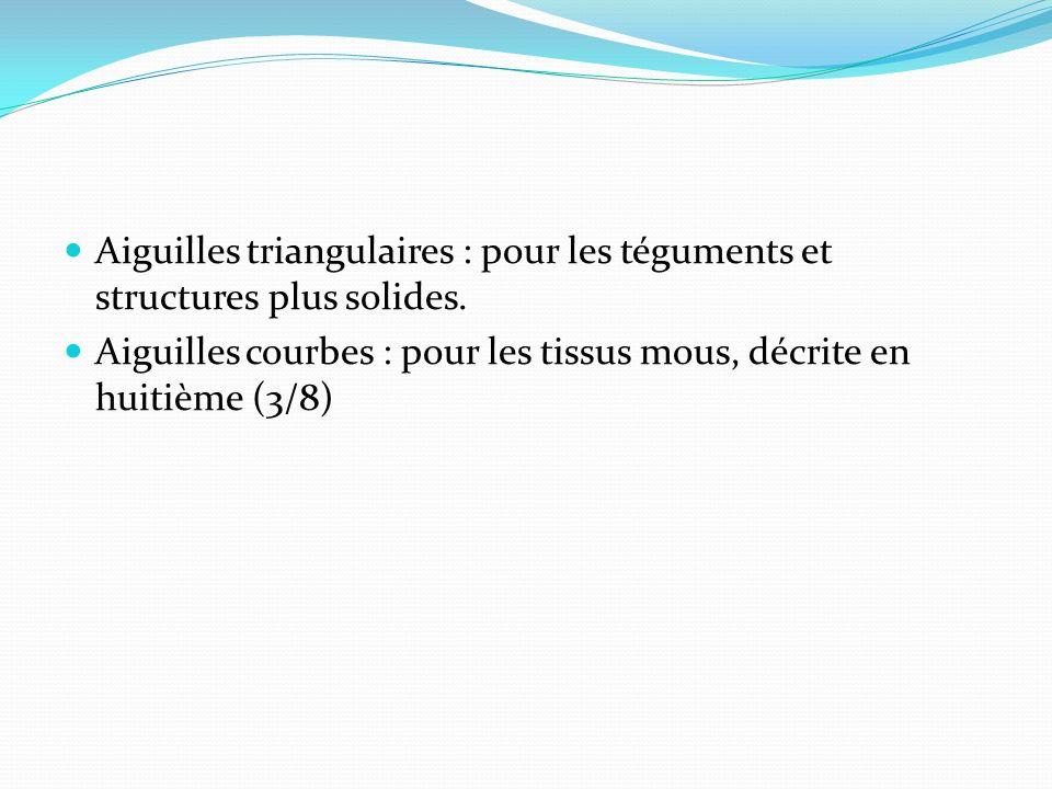 Aiguilles triangulaires : pour les téguments et structures plus solides.