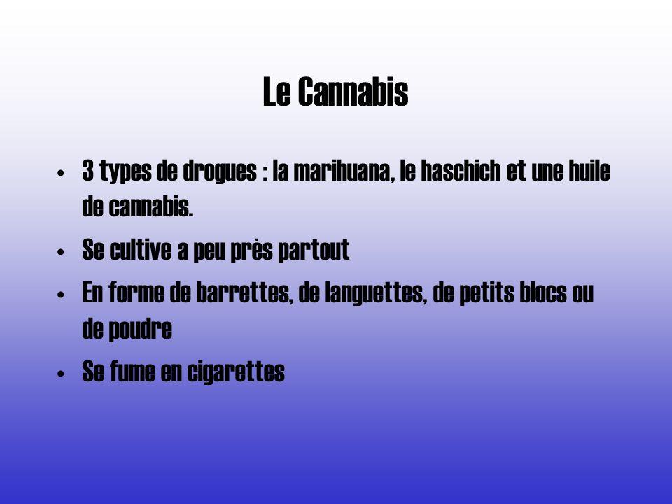 3 types de drogues : la marihuana, le haschich et une huile de cannabis. Se cultive a peu près partout En forme de barrettes, de languettes, de petits