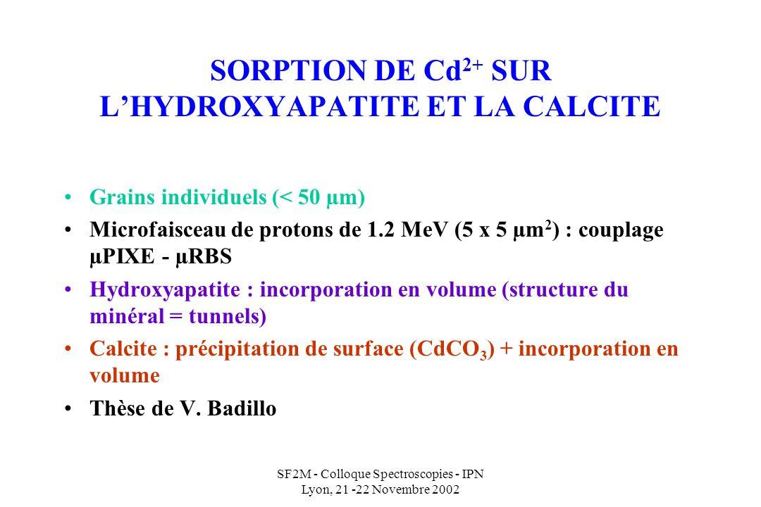 SF2M - Colloque Spectroscopies - IPN Lyon, 21 -22 Novembre 2002 SORPTION DE Cd 2+ SUR LHYDROXYAPATITE ET LA CALCITE Grains individuels (< 50 µm) Microfaisceau de protons de 1.2 MeV (5 x 5 µm 2 ) : couplage µPIXE - µRBS Hydroxyapatite : incorporation en volume (structure du minéral = tunnels) Calcite : précipitation de surface (CdCO 3 ) + incorporation en volume Thèse de V.