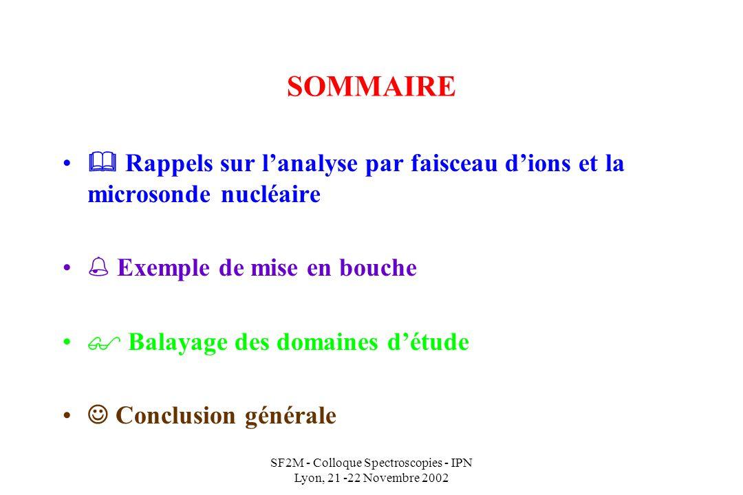SF2M - Colloque Spectroscopies - IPN Lyon, 21 -22 Novembre 2002 SOMMAIRE Rappels sur lanalyse par faisceau dions et la microsonde nucléaire Exemple de mise en bouche Balayage des domaines détude Conclusion générale