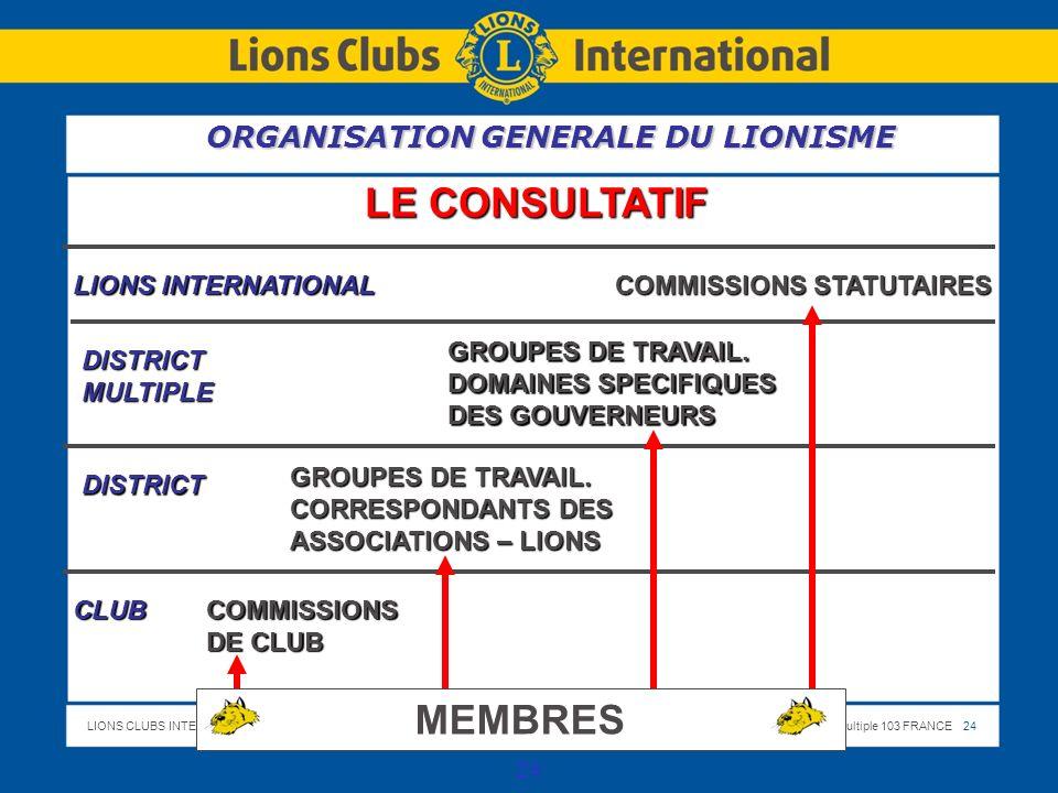 LIONS CLUBS INTERNATIONALDistrict Multiple 103 FRANCE 24 24 LE CONSULTATIF LIONS INTERNATIONAL COMMISSIONS STATUTAIRES DISTRICTMULTIPLE GROUPES DE TRAVAIL.