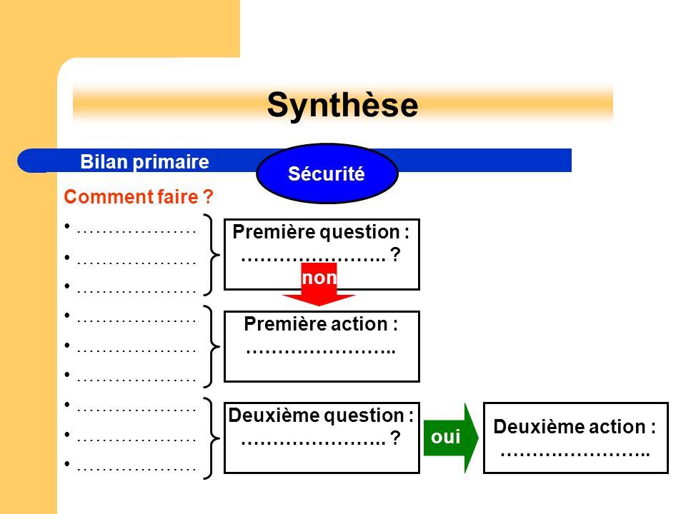 Synthèse Bilan primaire Comment faire ? ………………. Première question : ………………….. ? Première action : ……….………….. Deuxième question : ………………….. ? Deuxième