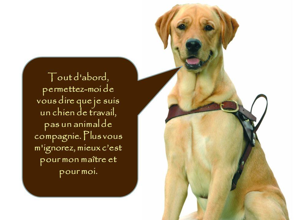 Tout d'abord, permettez-moi de vous dire que je suis un chien de travail, pas un animal de compagnie. Plus vous m'ignorez, mieux cest pour mon maître