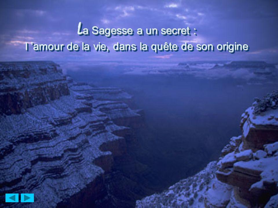 L a Sagesse a un secret : l amour de la vie, dans la quête de son origine L a Sagesse a un secret : l amour de la vie, dans la quête de son origine