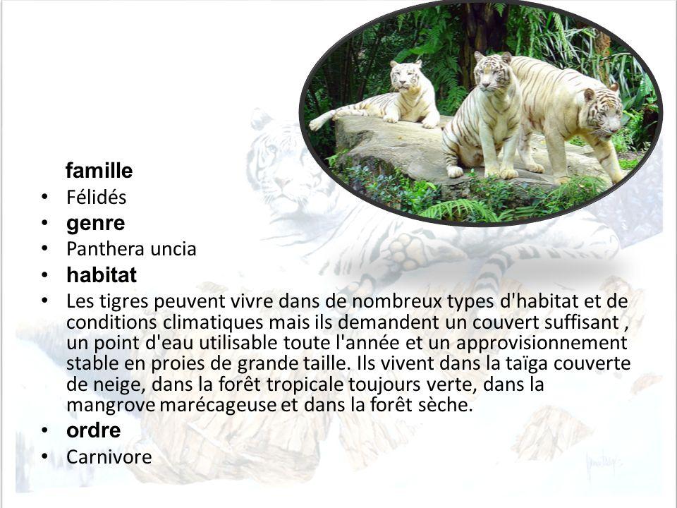 f amille Félidés genre Panthera uncia habitat Les tigres peuvent vivre dans de nombreux types d'habitat et de conditions climatiques mais ils demanden
