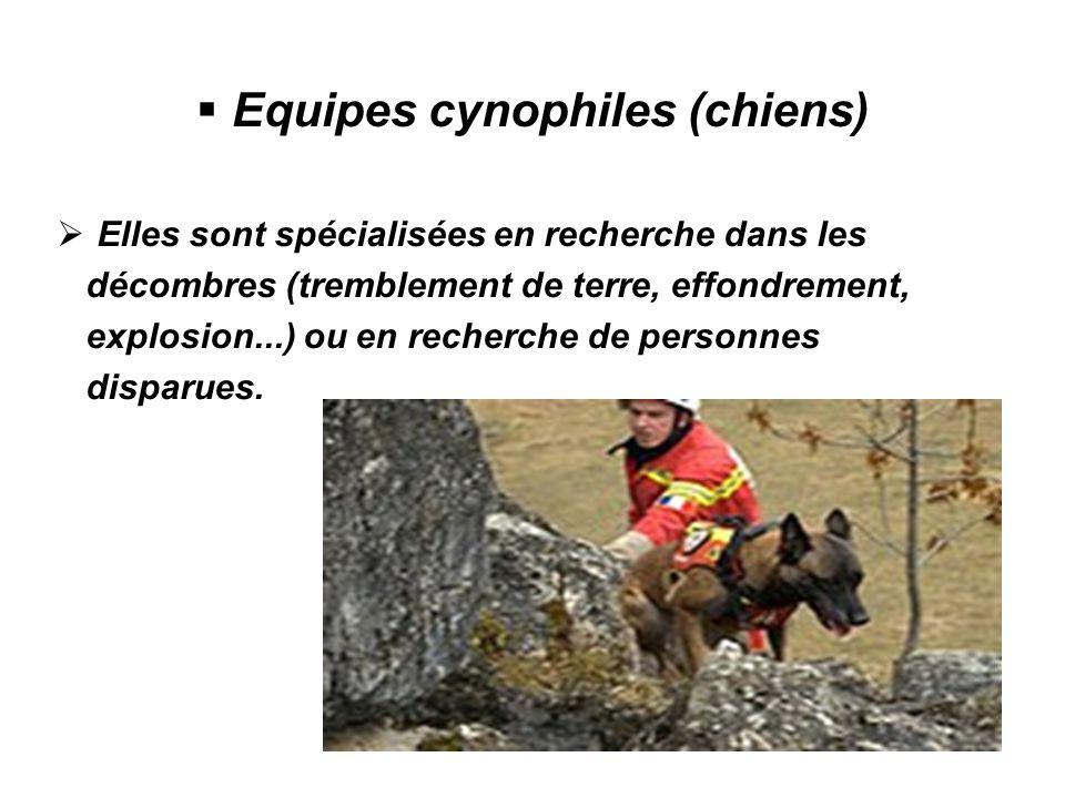 Equipes cynophiles (chiens) Elles sont spécialisées en recherche dans les décombres (tremblement de terre, effondrement, explosion...) ou en recherche de personnes disparues.