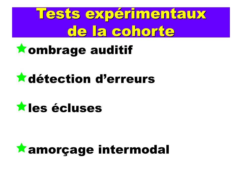 Tests expérimentaux de la cohorte ombrage auditif détection derreurs les écluses amorçage intermodal