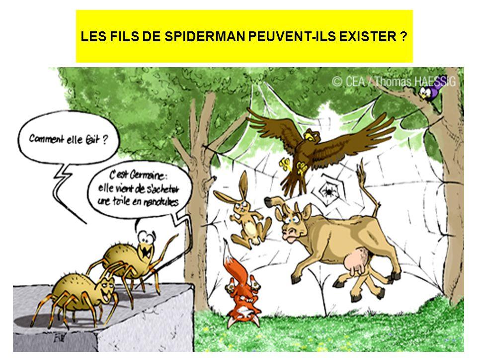 LES FILS DE SPIDERMAN PEUVENT-ILS EXISTER ?
