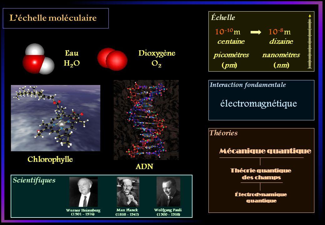 Scientifiques Échelle Interaction fondamentale Théories Léchelle moléculaire Eau H 2 O Dioxygène O 2 Chlorophylle ADN 10 -10 m10 -8 m centaine picomèt