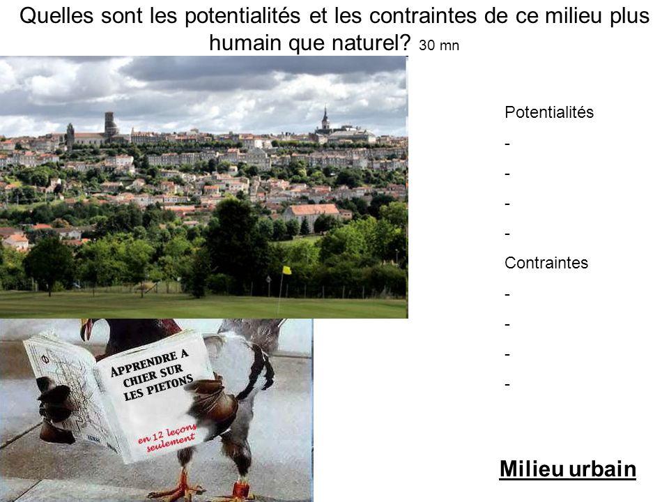 Quelles sont les potentialités et les contraintes de ce milieu plus humain que naturel? 30 mn Potentialités - - - - Contraintes - - - - Milieu urbain