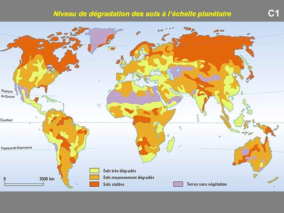 C1 Niveau de dégradation des sols à léchelle planétaire