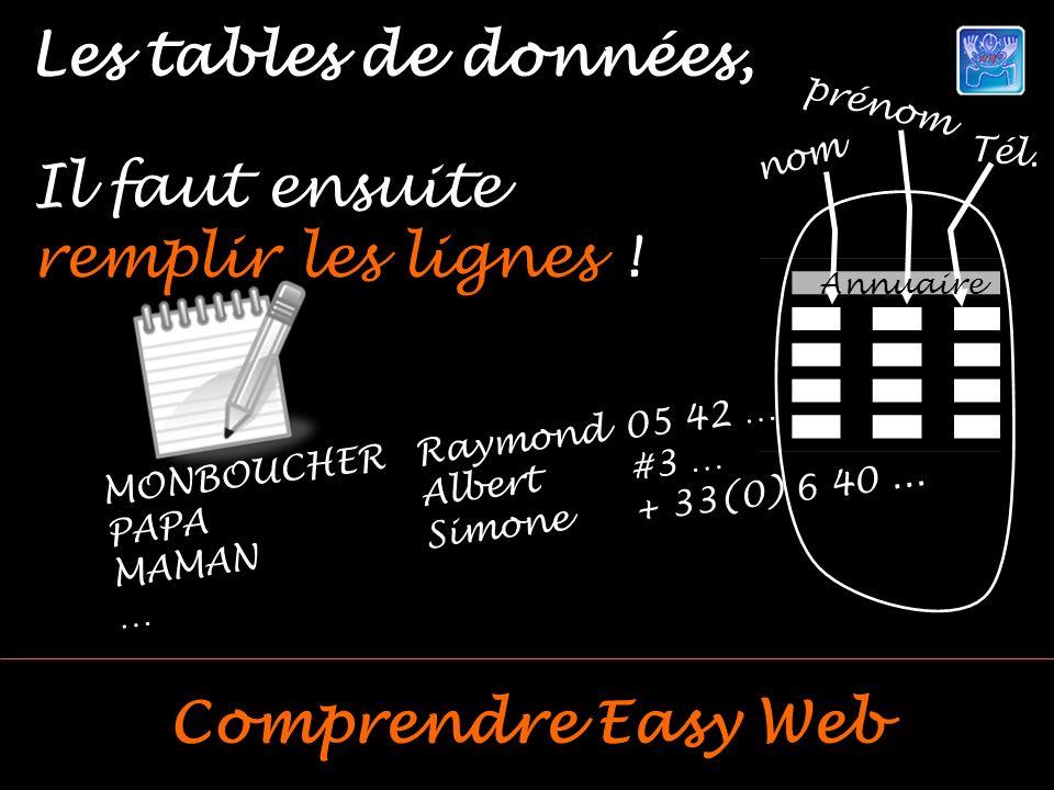 Les tables de données, Comprendre Easy Web Il faut ensuite remplir les lignes .