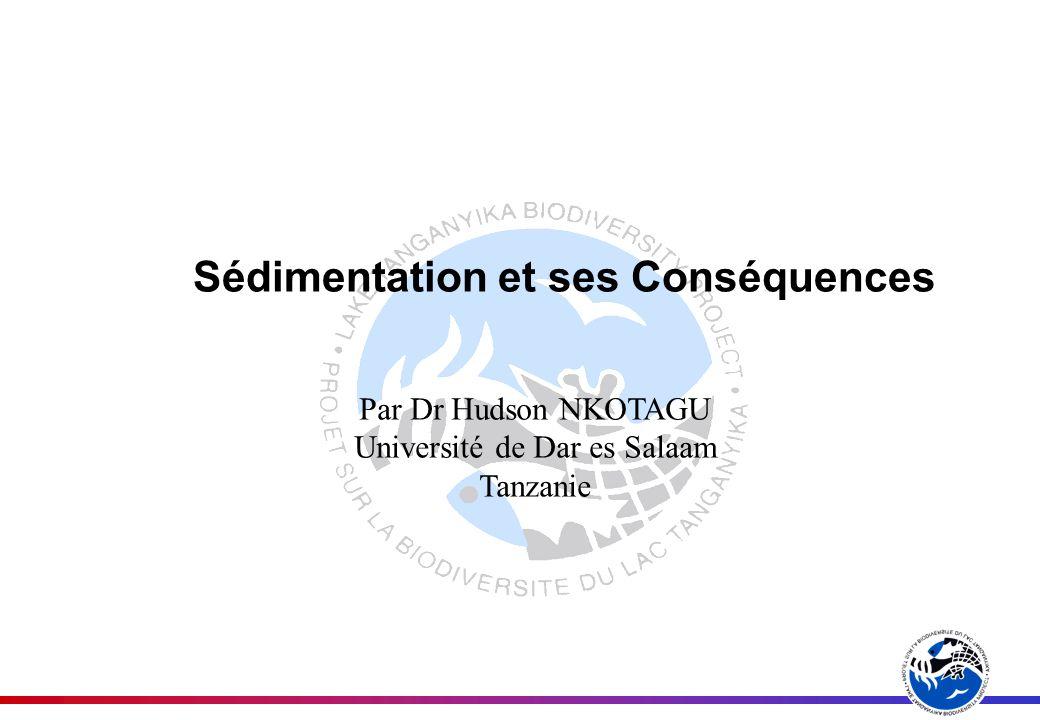 Sédimentation et ses Conséquences Par Dr Hudson NKOTAGU Université de Dar es Salaam Tanzanie