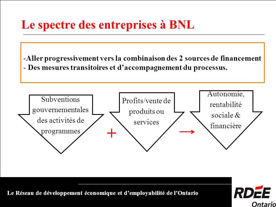 Le spectre des entreprises à BNL Le Réseau de développement économique et demployabilité de lOntario Subventions gouvernementales des activités de pro