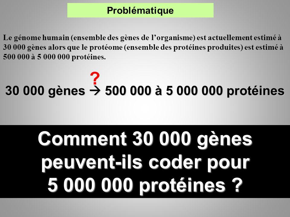 Le génome humain (ensemble des gènes de lorganisme) est actuellement estimé à 30 000 gènes alors que le protéome (ensemble des protéines produites) es
