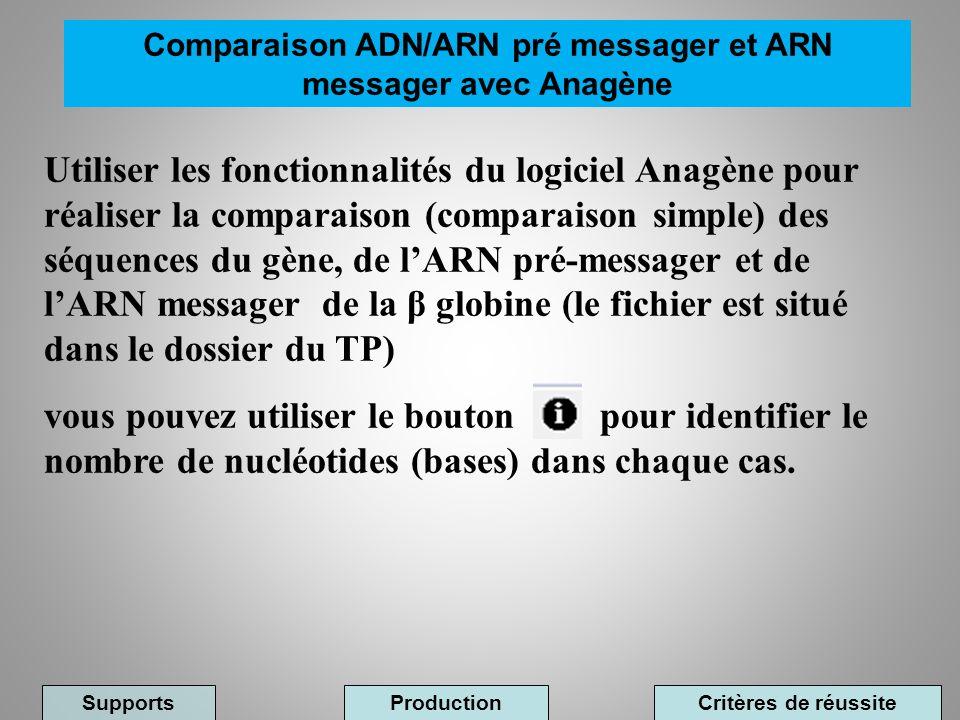 Utiliser les fonctionnalités du logiciel Anagène pour réaliser la comparaison (comparaison simple) des séquences du gène, de lARN pré-messager et de l