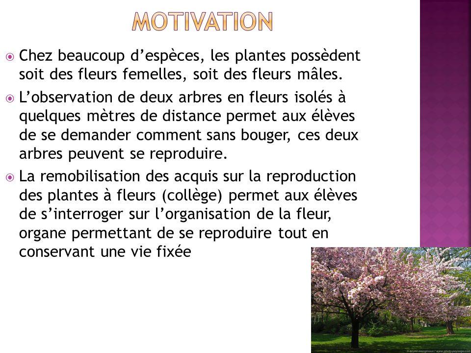 Chez beaucoup despèces, les plantes possèdent soit des fleurs femelles, soit des fleurs mâles. Lobservation de deux arbres en fleurs isolés à quelques