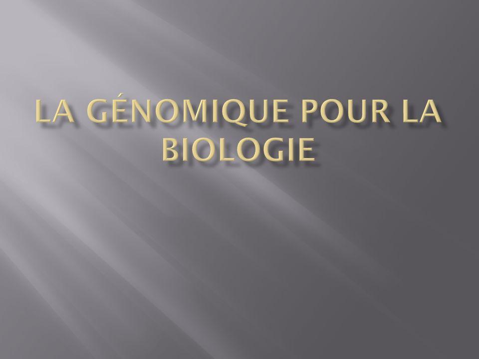 Identifier les composants structurels et fonctionnels encodés dans le génome humain