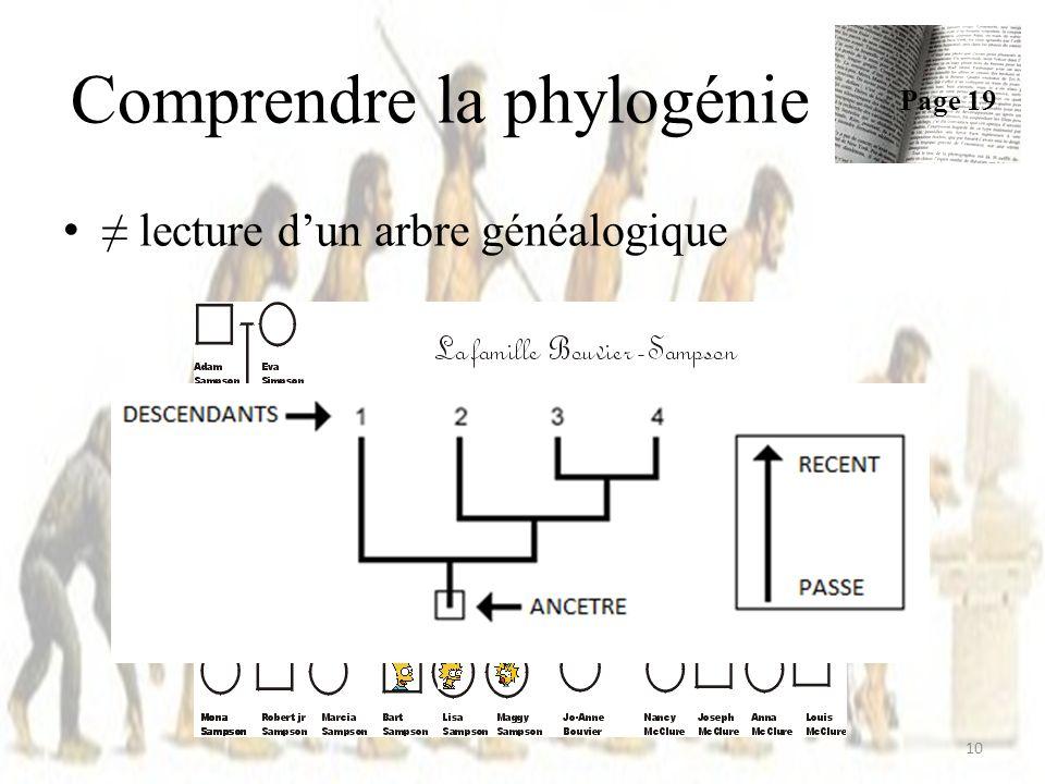 lecture dun arbre généalogique Comprendre la phylogénie Page 19 10