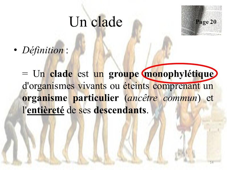Définition : = Un clade est un groupe monophylétique d organismes vivants ou éteints comprenant un organisme particulier (ancêtre commun) et l entièreté de ses descendants.