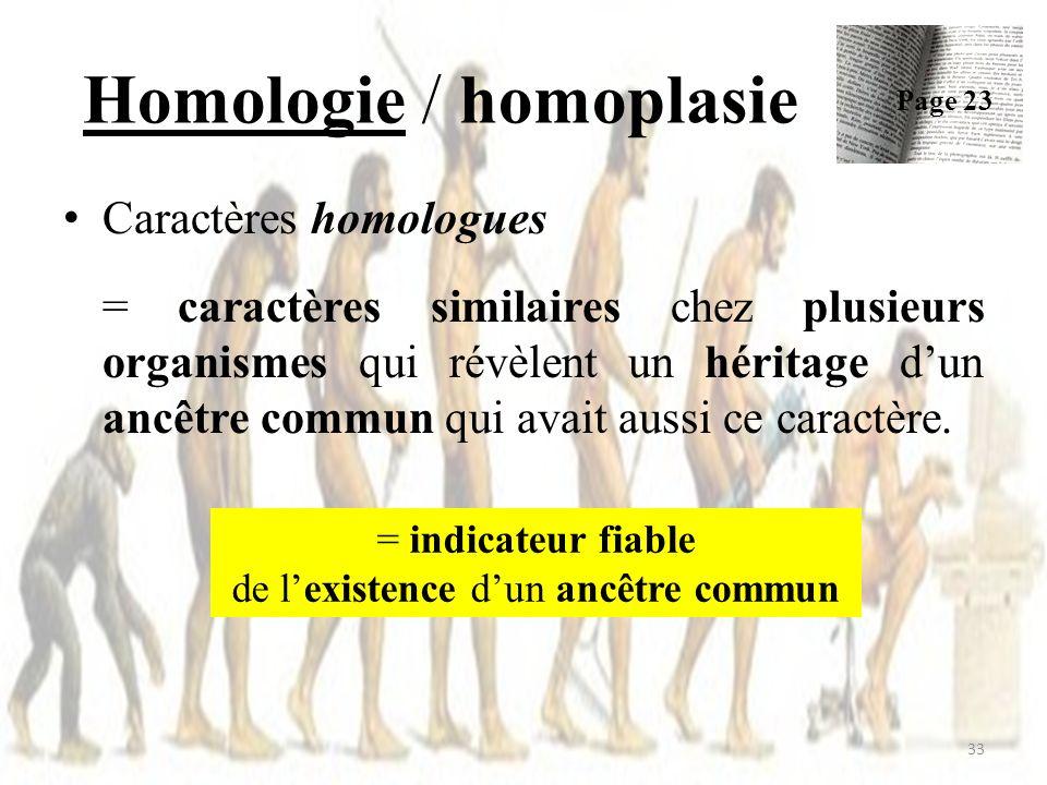 Homologie / homoplasie 33 Caractères homologues = caractères similaires chez plusieurs organismes qui révèlent un héritage dun ancêtre commun qui avait aussi ce caractère.