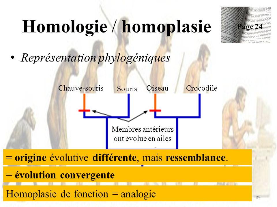 Homologie / homoplasie Représentation phylogéniques 39 Page 24 Chauve-souris Evolution de quatre membres Membres antérieurs ont évolué en ailes Oiseau Souris Crocodile = origine évolutive différente, mais ressemblance.