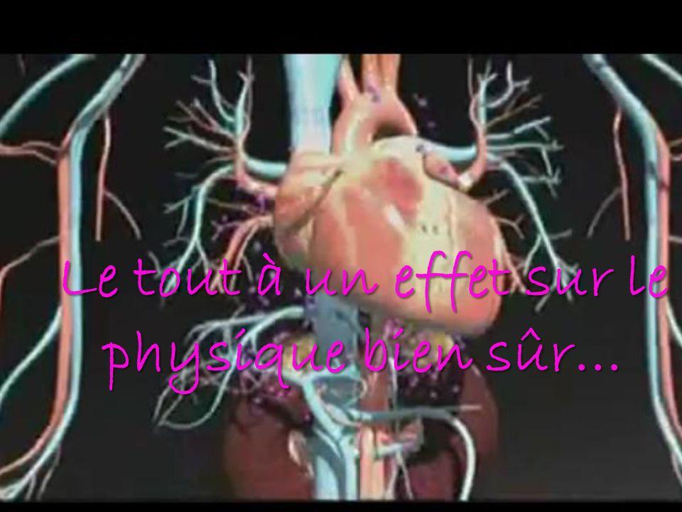 Cortisol et adrénaline Le tout à un effet sur le physique bien sûr…