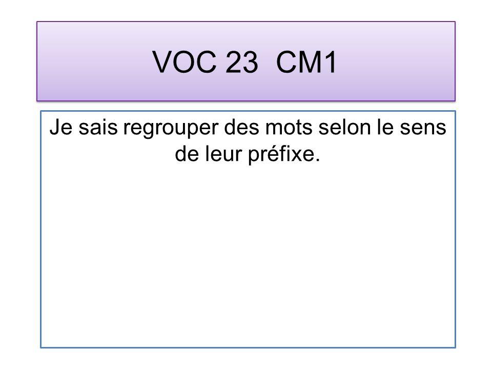 VOC 23 CM1 Je sais regrouper des mots selon le sens de leur préfixe.