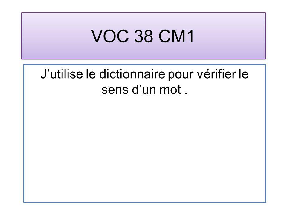 VOC 38 CM1 Jutilise le dictionnaire pour vérifier le sens dun mot.