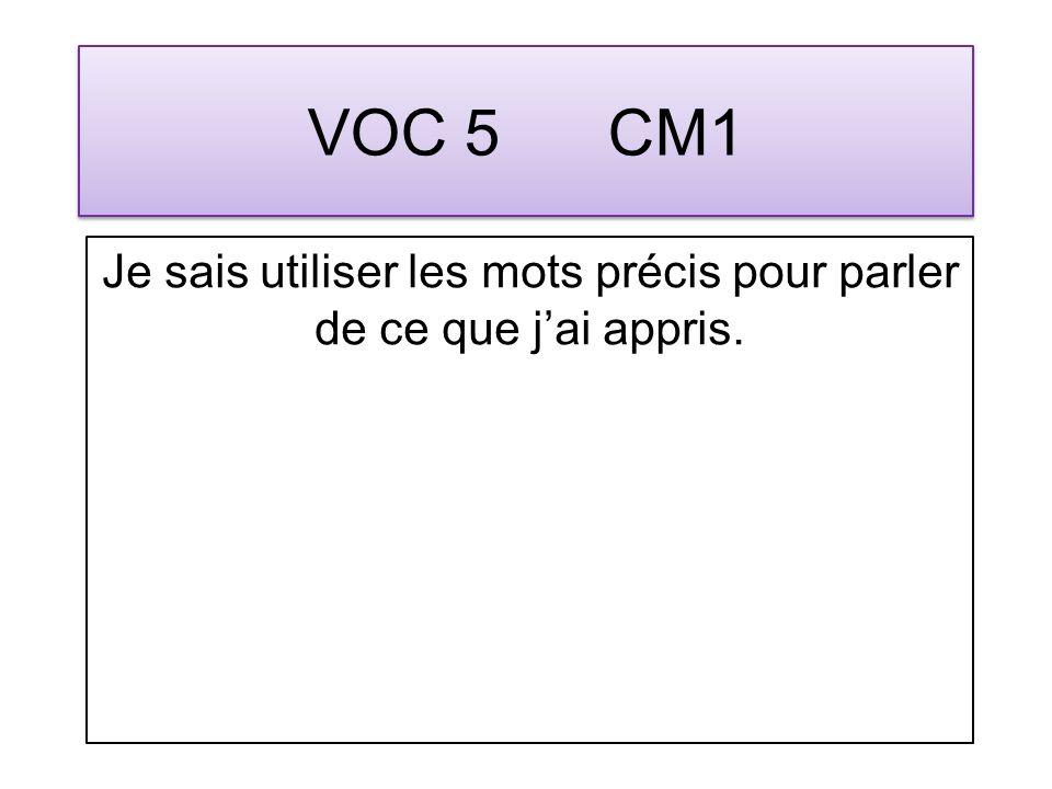 VOC 26 CM1 Je connais et utilise oralement le vocabulaire concernant la construction des mots : radical, préfixe, suffixe, famille.