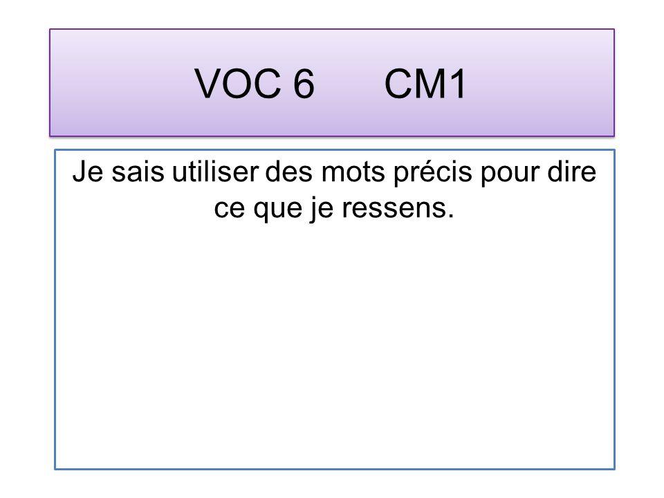 VOC 6 CM1 Je sais utiliser des mots précis pour dire ce que je ressens.