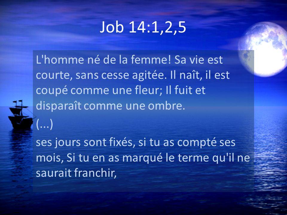 Job 14:1,2,5 L'homme né de la femme! Sa vie est courte, sans cesse agitée. Il naît, il est coupé comme une fleur; Il fuit et disparaît comme une ombre