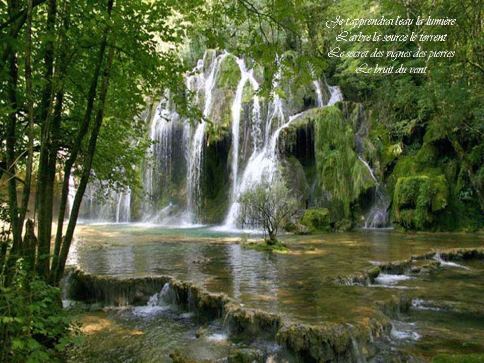 Je t apprendrai l eau la lumière L arbre la source le torrent Le secret des vignes des pierres Le bruit du vent