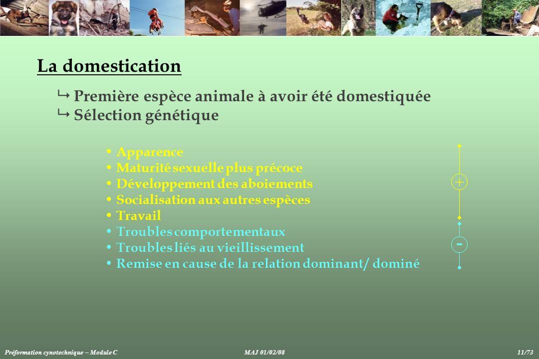La domestication Première espèce animale à avoir été domestiquée Sélection génétique Apparence Maturité sexuelle plus précoce Développement des aboiem