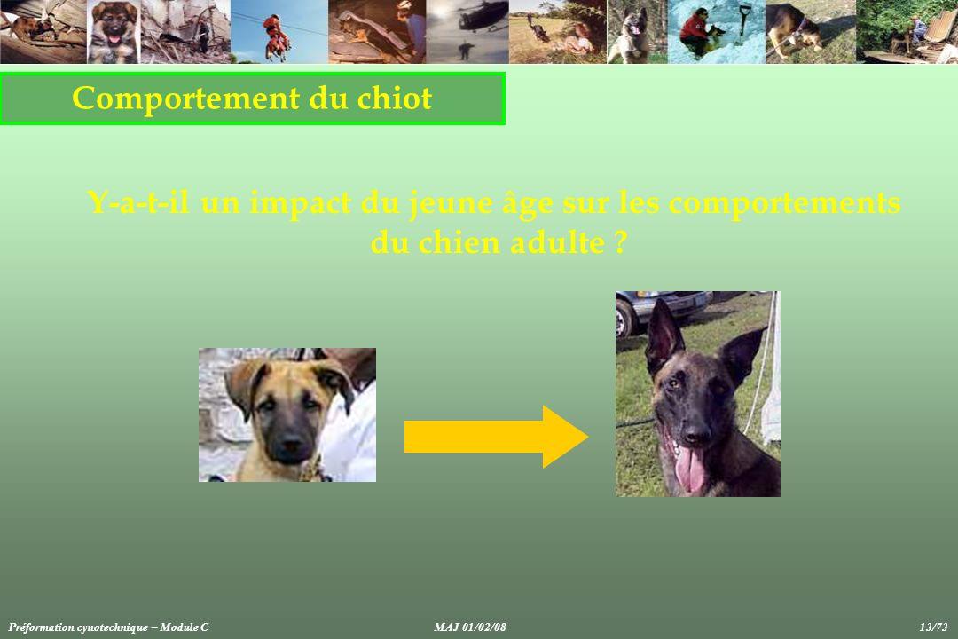 Comportement du chiot Y-a-t-il un impact du jeune âge sur les comportements du chien adulte ? Préformation cynotechnique – Module CMAJ 01/02/08 13/73