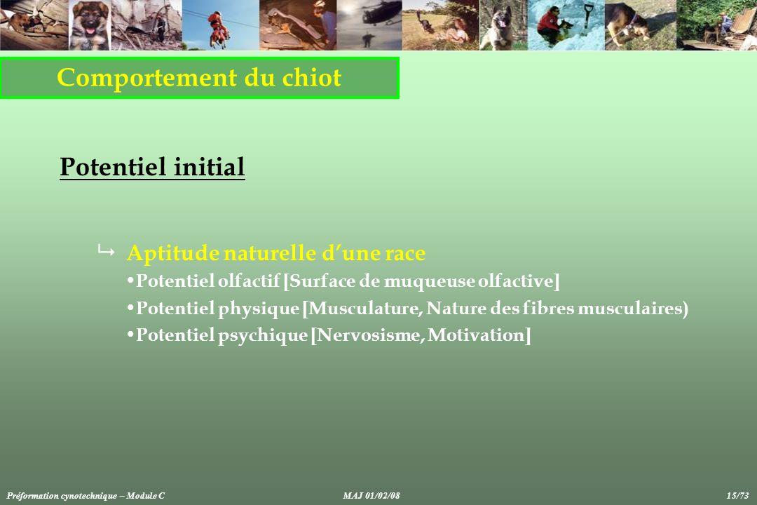 Comportement du chiot Potentiel initial Aptitude naturelle dune race Potentiel olfactif [Surface de muqueuse olfactive] Potentiel physique [Musculatur