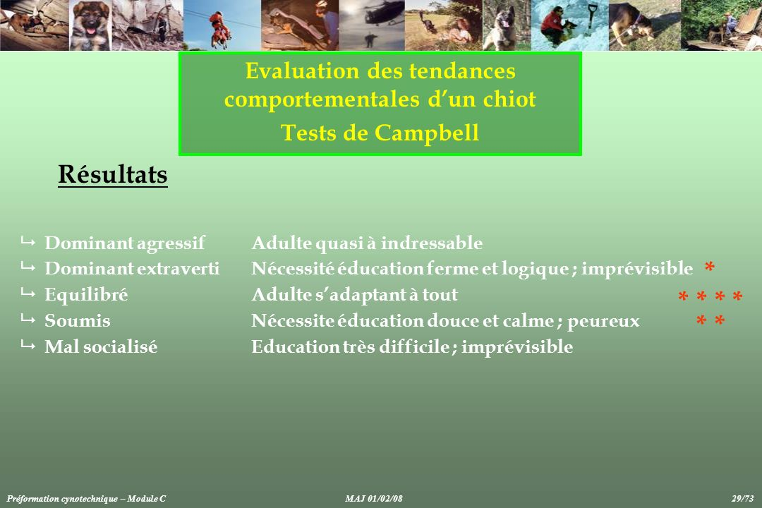 Evaluation des tendances comportementales dun chiot Tests de Campbell Résultats Dominant agressif Adulte quasi à indressable Dominant extraverti Néces