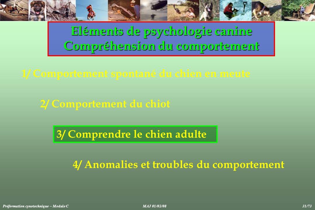 1/ Comportement spontané du chien en meute Eléments de psychologie canine Compréhension du comportement 2/ Comportement du chiot 3/ Comprendre le chie
