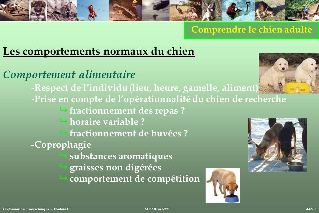 Comprendre le chien adulte Les comportements normaux du chien Comportement alimentaire - Respect de lindividu (lieu, heure, gamelle, aliment) - Prise en compte de lopérationnalité du chien de recherche fractionnement des repas .