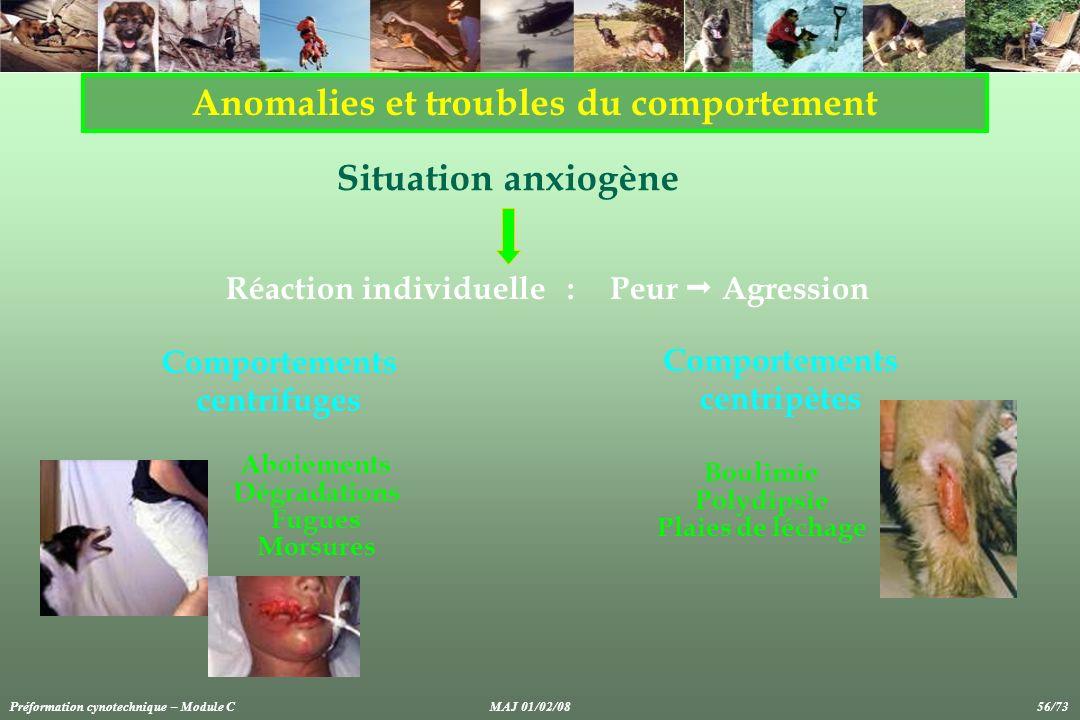 Anomalies et troubles du comportement Aboiements Dégradations Fugues Morsures Situation anxiogène Réaction individuelle :Peur Agression Boulimie Polyd